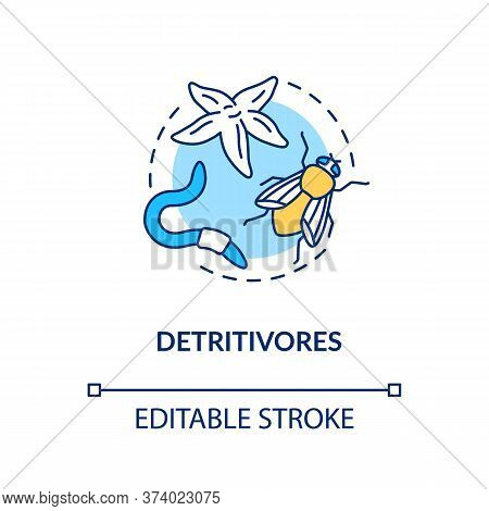Detritivores Concept Icon. Food Chain Energy Consumer Organisms. Insects And Earthworms. Detritus Fe