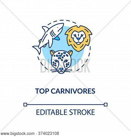 Top Carnivores Concept Icon. Wild Animals. Food Chain Apex Predators. Marine And Land Ecosystems Ide