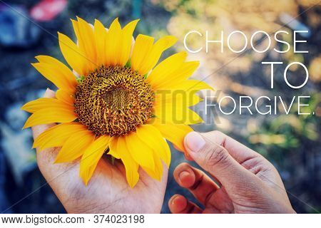 Inspirational Quote - Choose To Forgive. With Sunflower In The Hand. Forgiveness Or Forgiving Concep