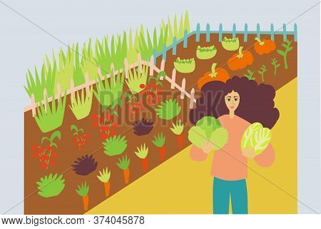 Illustration Of Woman Cultivating Organic And Fresh Vegetables In A Farm - Sustainability And Vegani