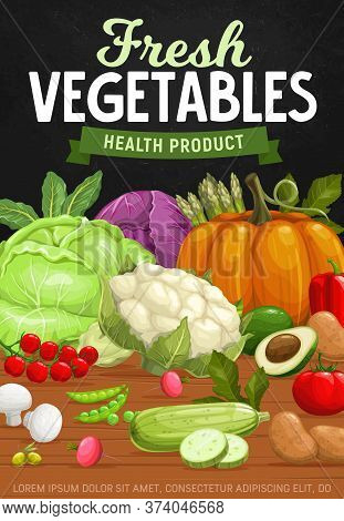 Farm Vegetables, Healthy And Natural Food Products. Vector Cabbage, Asparagus, Pumpkin And Bell Pepp
