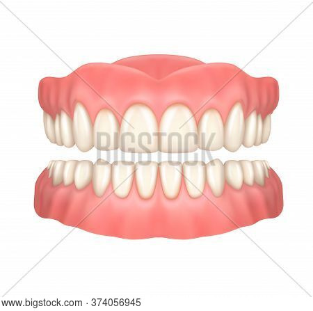 Dentures Or False Teeth Realistic Vector Design Of Orthodontics And Aesthetic Dentistry Medicine. Up