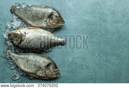 Gilt-head Bream Fish Or Royal Dorade On Ice Cubes. Copy Space For Text.