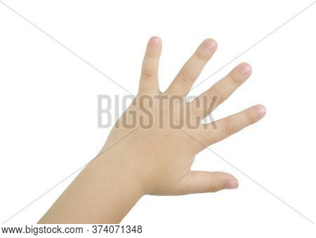 Child Hand On A White Background Without A Shadow.