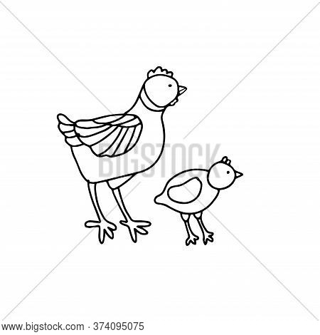 A Cute Hen And A Chick In Doodle Style. Isolated Outline. Hand Drawn Vector Illustration In Black In