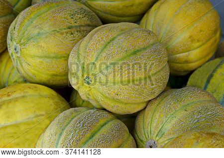 Chamber Of Fresh Ripe Whole Melons Per Chamber In The Open Market, Sofia, Bulgaria