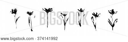 Grunge Black Flowers Set Drawn By Ink. Dirty Decorative Vector Floral Collection, Isolated On White