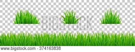 Green Grass On Spring Lawn Or Field. Vector Realistic Set Of Border Of Summer Meadow Plants And Bunc