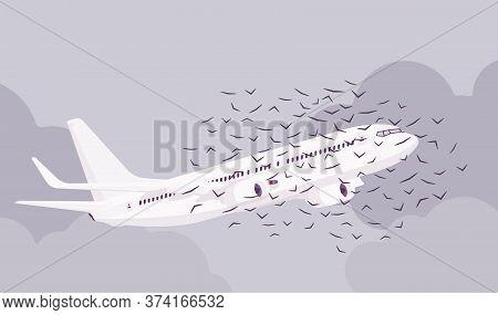 Passenger Plane Bird Flock Strike, Ingestion And Civil Aircraft Engine Hit Accident, Collision Causi