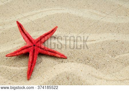 Sand On The Beach, Starfish As Background. Concept Of Rest. Top View.