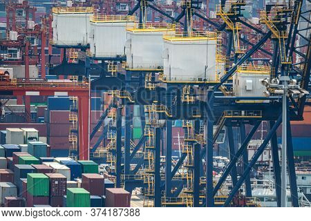 Working at Tshing yi Hong Kong Port for shipping and freight transportation and global business import and export background