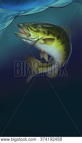 Largemouth Bass Jumps Out Of Water Realistic Illustration Background. Big Bass Perch Fishing In The