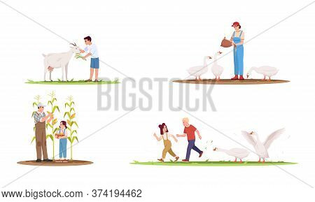 Farm Animals With Owners Semi Flat Vector Illustration Set. Geese On Ranch With Kids. Family Collect