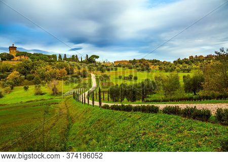 Rural tourism. Cozy picturesque farms in the hills of Tuscany. Olive trees on green grassy meadows. Winding dirt road rises to the farm. The concept of active, rural and photo tourism
