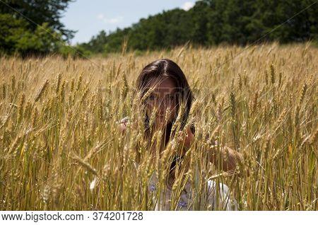 Woman In Rye. Field Of Spikelet. Summer Wheat Field. Ukrainian Nature In Summer. Girl In Ukraine. Co