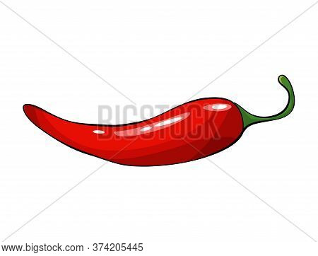 Hand Drawn Chili Pepper. Super Hot Red Chilli Pepper. Red Chilli Pepper On White Background. Natural