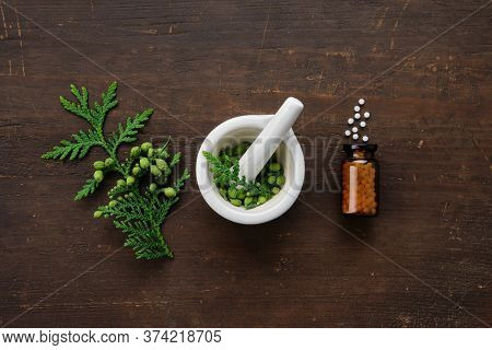 Bottle Of Homeopathic Globules. Thuja Occidentalis Twigs And Mortar. Homeopathy Medicine Concept. To