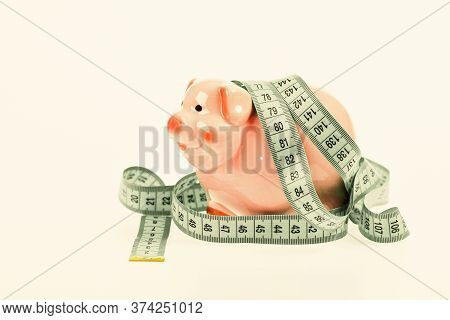 Budget Crisis. Planning Budget. Business Problem. Limited Or Restricted. Credit Loan Debt. Piggy Ban