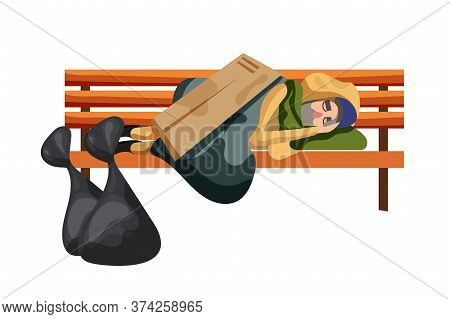 Homeless People. Poor Man Beggar Character Sleep On Bench Isolated On White Background. Asleep Tramp