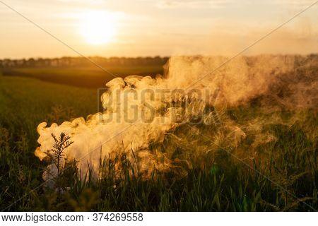 Smoke Bomb In Young Wheat. The White Smoke In Grass Against Evening Sun. Sun Near Horizon.