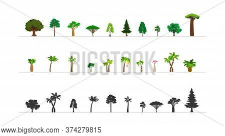 Green Forest Tree Icons. Exotic Bushes Palms, Different Woods Silhouettes. Botanical Symbols Vector