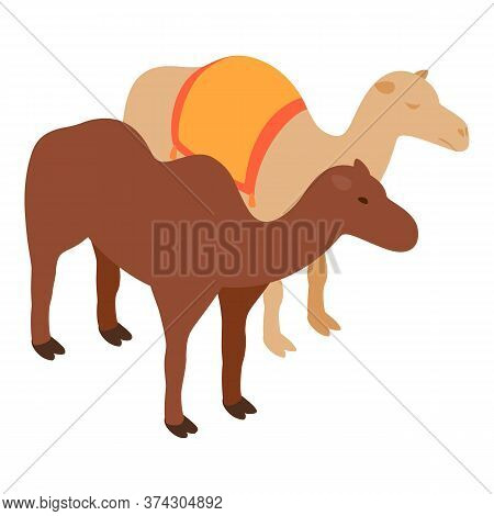 Camel Icon. Isometric Illustration Of Camel Vector Icon For Web