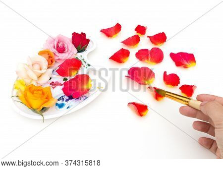 Watercolor Palette With Multi-colored Rosebuds And Art Brush On A White Background. The Colors Of Su