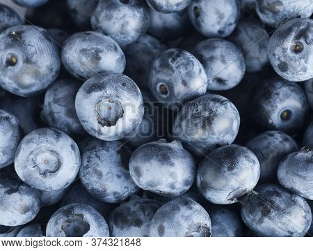 Fresh Blueberry Background. Texture Blueberry Berries Close Up. Sprinkle Blueberries. Top View. Fres