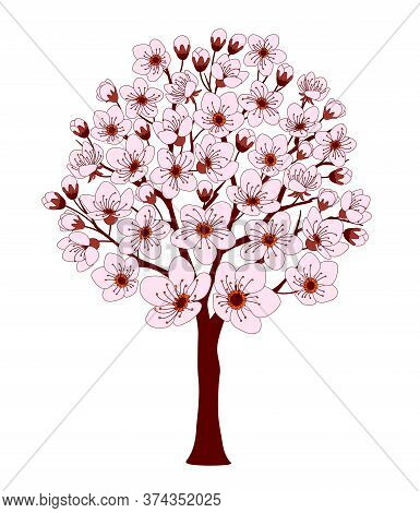 Colorful Cherry Tree With Pink Blossom Isolated On The White Background. Cartoon Vector Illustration