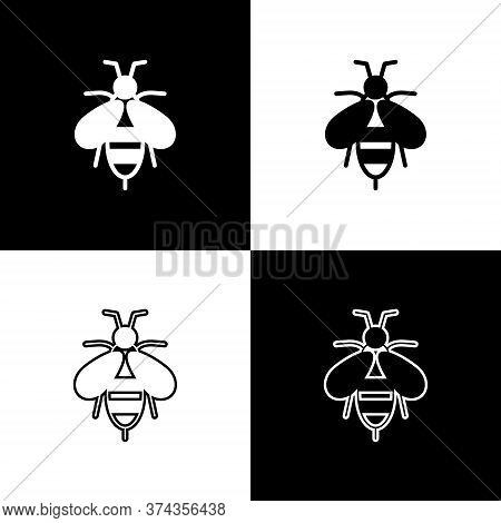 Set Bee Icon Isolated On Black And White Background. Sweet Natural Food. Honeybee Or Apis With Wings