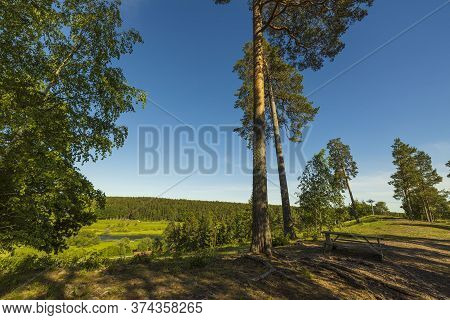 Gorgeous Summer Landscape View. Hilltop Forest Trees On Blue Sky Background. Sweden. Europe.