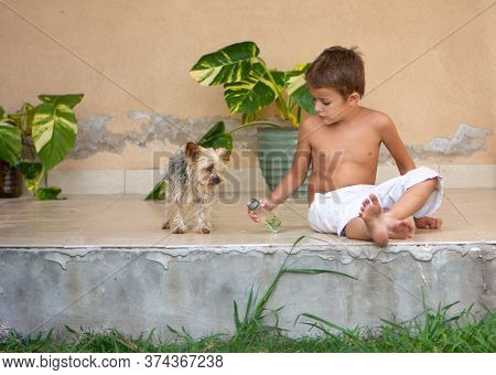 little boy with a dog during quarantine