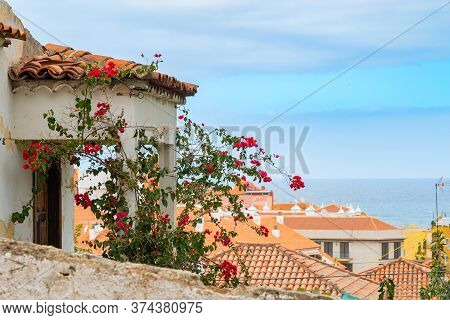 Scenic View Of Roofs With Flowers And Atlantic Ocean On Background, Puerto De La Cruz, Tenerife, Spa