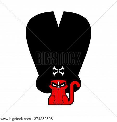 Cat Pirate In Hat Isolated. Pet Buccaneer. Grumpy Cat Filibuster. Vector Illustration