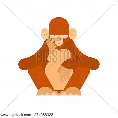 Monkey Thinks Isolated. Chimpanzee Ponders Vector Illustration