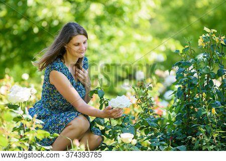 Girl In Green Garden Admires White Rose On Bush