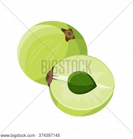Whole And Half Amla. Isolated On White Background. Vector Flat Color Icon.