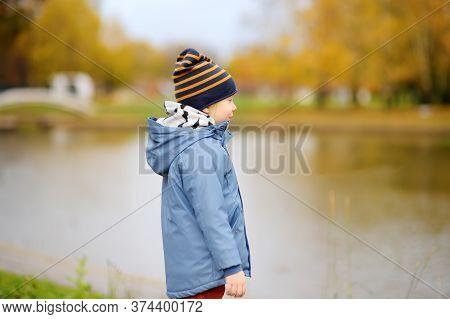 Preschooler Boy Walking In Autumn Park. Outdoor Activities For Children. Stroll For Kids During Quar