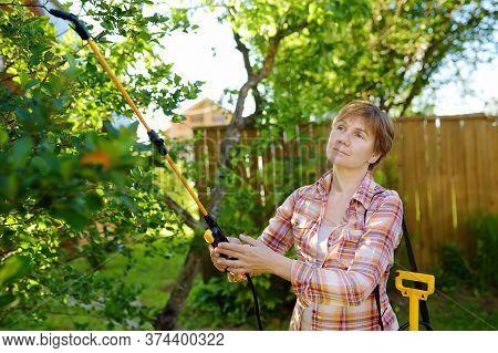 Middle Age Caucasian Woman Sprays Trees Against Pests, Vermin Or Diseases Plants. Gardening. Seasona