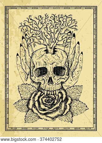Wiccan Emblem With Skull, Human Hands, Rose Flower And Tree In Frame. Esoteric, Occult And Gothic Ve