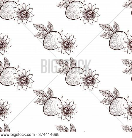 Vector Drawing Seamless Pattern With Passion Fruit, Leaf And Flower, Passiflora, Hand Drawn Illustra