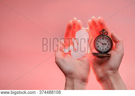 Paper Embryo Silhouette And Clock In Woman Hands With Light. Light Coral Background With Copy Space.