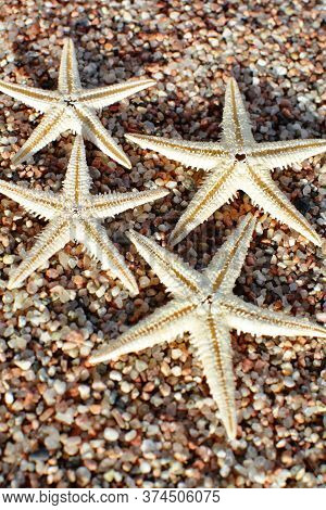 Starfish On The Beach. Sandy Beach With Waves. Summer Vacation Concept. Holidays By The Sea