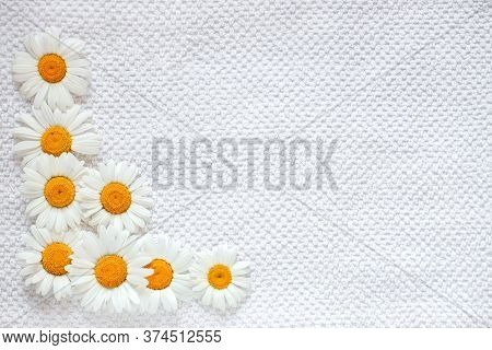 Daisies On A White Cotton Bath Towel, The Concept Of Taking A Bath With Herbal Tinctures, Spa Treatm