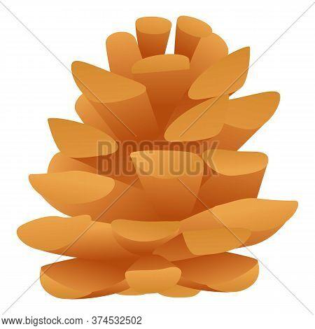 Coniferous Cone Icon. Cartoon Of Coniferous Cone Vector Icon For Web Design Isolated On White Backgr