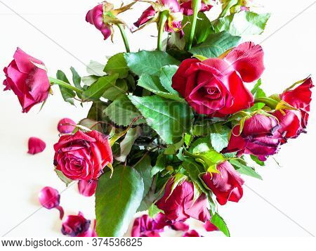 Bouquet Of Withered Red Rose Flowers On Pale Brown Table (focus On The Bloom On Foreground)