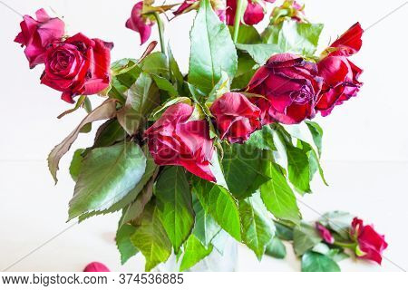 Bouquet Of Wilted Red Rose Flowers On Pale Brown Background (focus On The Bloom On Foreground)