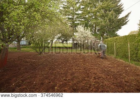 Old Man Plows The Ground With A Motor Cultivator. A Farmer Ploughs The Soil Using A Petrol Cultivato