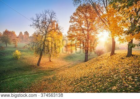 Rays Of The Sun Through Golden Autumn Trees In A Ravine In Tsaritsyno Park In Moscow On An Early Sun