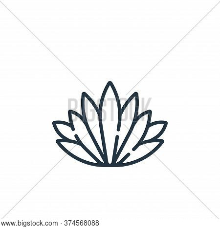 agave icon isolated on white background from mexico collection. agave icon trendy and modern agave s